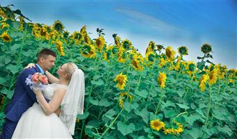 Ahmedabad to Shimla Manali Chandigarh Amritsar honeymoon package 10 Nights 11 Days by Train